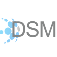 DSM Solutions