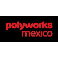 PolyWorks Mexico Metrología