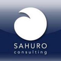 Sahuro Consulting