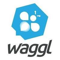 Waggl Inc.