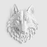 Wolf BCPP