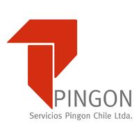 Servicios Pingon Chile