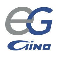 Grupo Gino