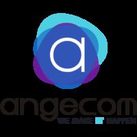 Angecom Computación SpA