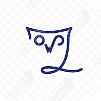 Owlfirst Consultores