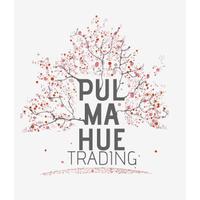 Pulmahue Trading SpA